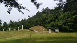 흥선대원군의 후손이 대원군의 묘역과 토지 등을 경기도에