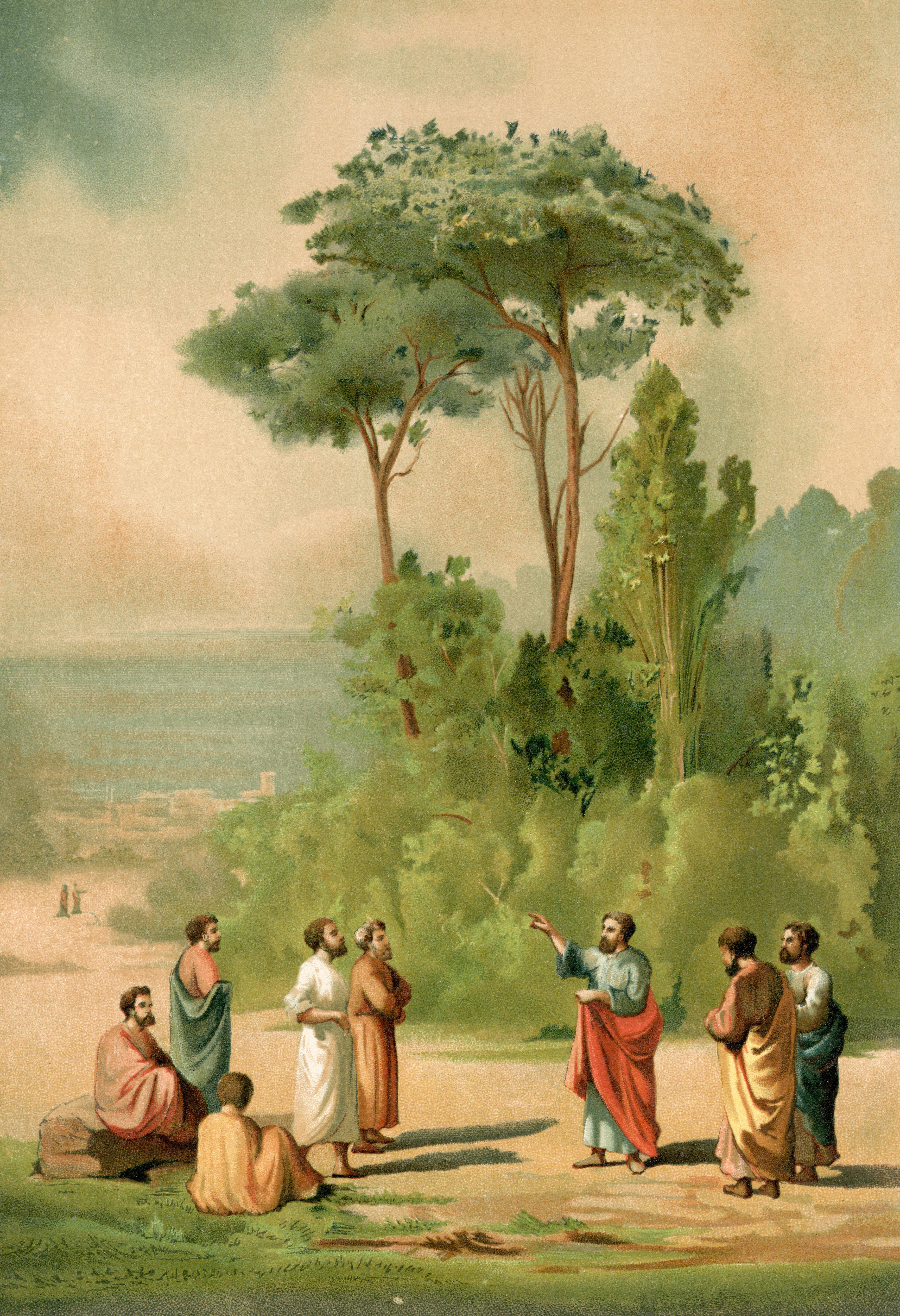 Η διακλάδωση του Ιλισσού και του