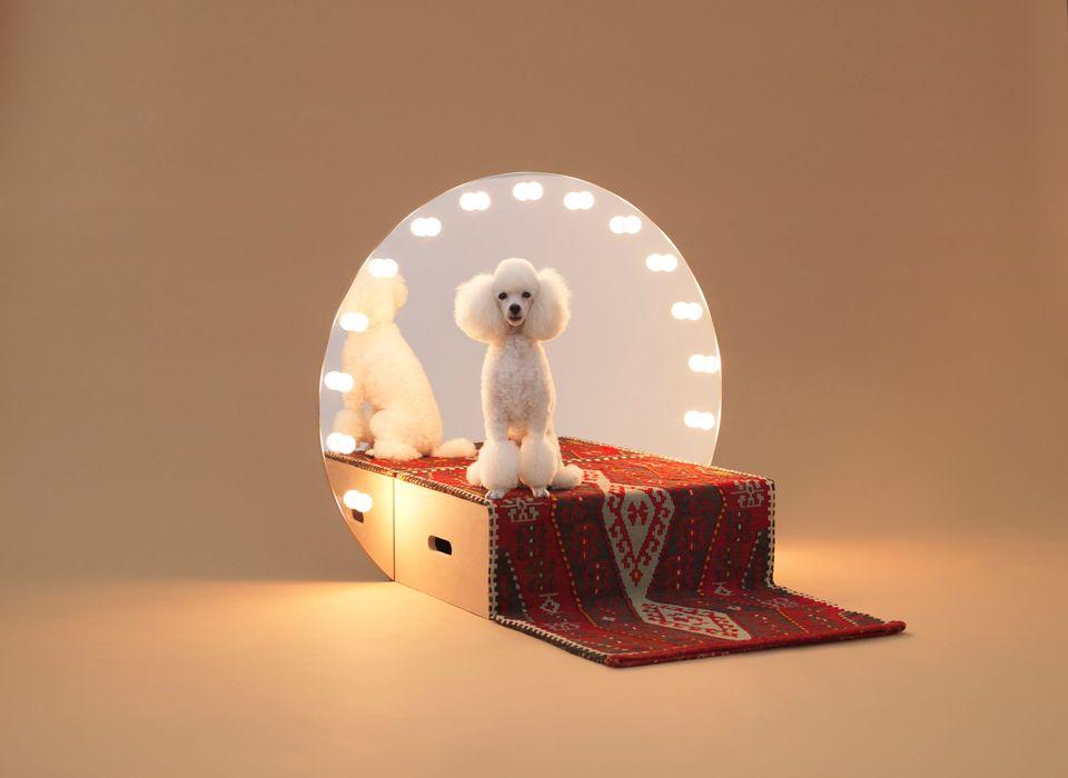 "Architecture For Dogs (Hiroshi Yoda/<a href=""http://www.ndc.co.jp/hara/en/"">Hara Design Institute</a>, Nippon Design )"