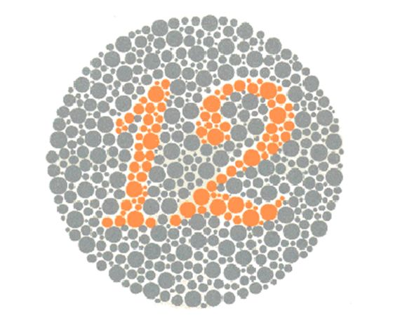 All people should see a number 12, including those with total color blindness. If someone says they can't see something, or s