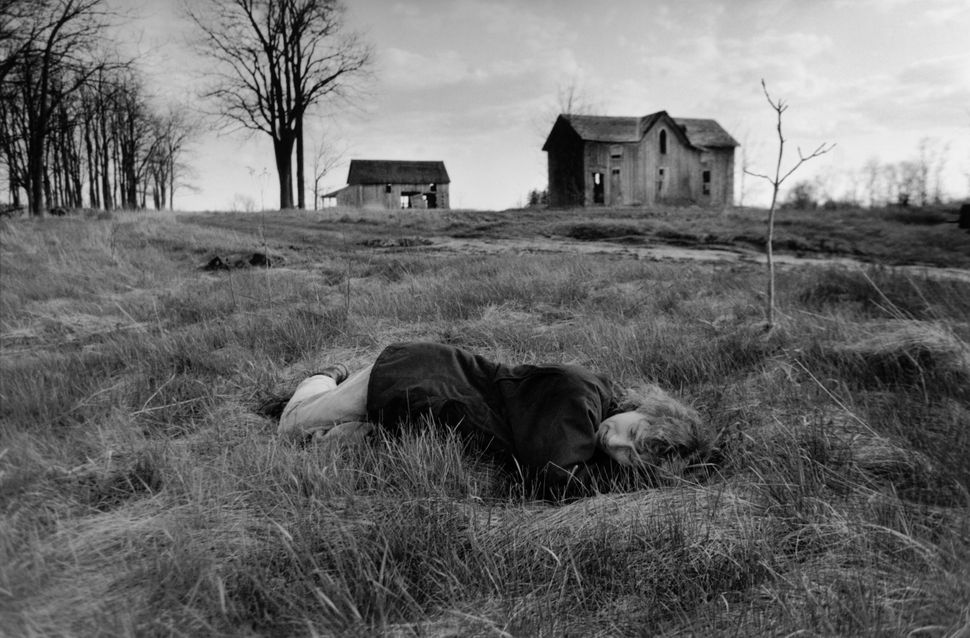 """""""My wife Ann and I had been digging during the day, transplanting lilies from the front of this abandoned farmhouse back down"""