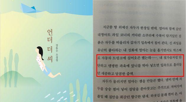 세월호 희생자 시점 소설 '언더 더 씨'의 일부 표현이 성희롱 논란을