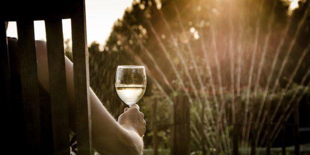 Vinho é uma ótima opção de bebida sociável e