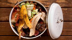 41 mil toneladas por ano: Por que o Brasil desperdiça tanta comida