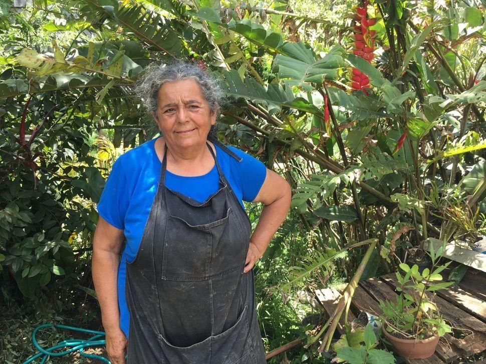Dona Sebastiana, em sua horta em São Mateus, zona Leste.