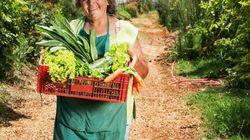 A ONG que transforma terrenos abandonados em hortas orgânicas para a