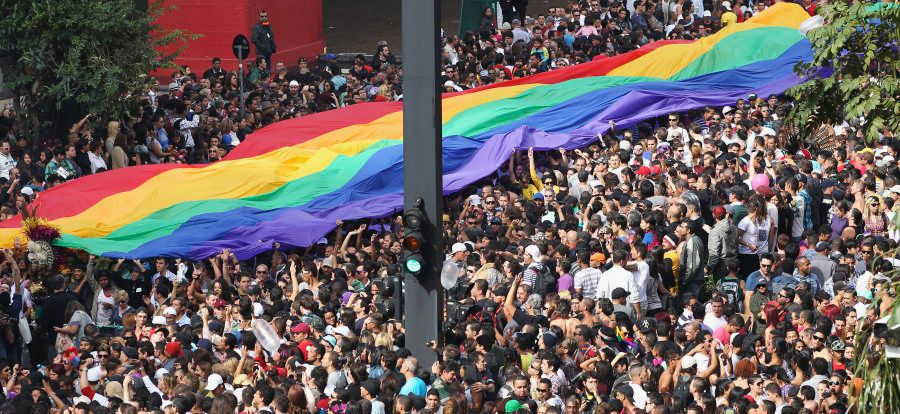 Participants march with a rainbow-coloured flag during the 16th LGBT pride parade in Sao Paulo June 10,...