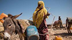 Seca na África: Ou respondemos imediatamente ou assistiremos aos somalis morrerem de