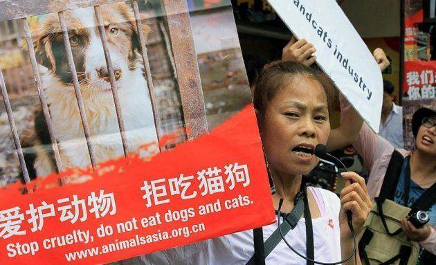 Ativista chinesa protesta contra festival de