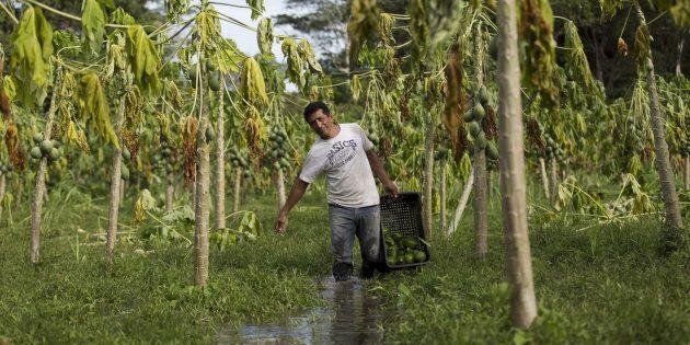 Mesmo com Cadastro Ambiental Rural, categorias vulneráveis não conseguem regularizar suas