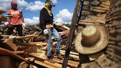 A receita para acabar com a exploração ilegal de madeira na