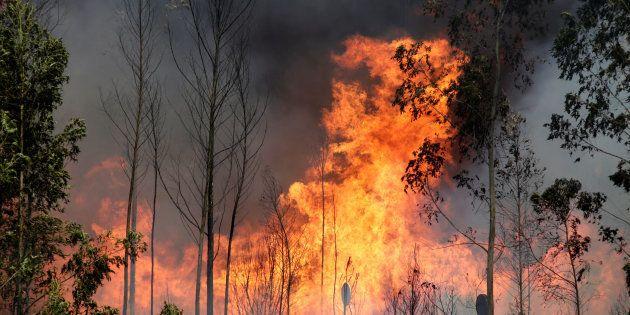 O maior número de vítimas foi registrado na vila de Pedrogão Grande, mas o fogo se alastrou também pelas...