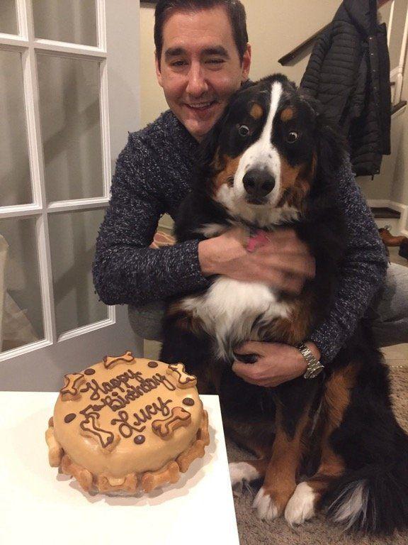 Esta é Lucy, uma catiorínea que ficou MUITO surpresa ao ver seu bolo de