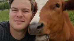 Esta vaquinha achava que posava para um selfie, mas seu amigo humano estava gravando um