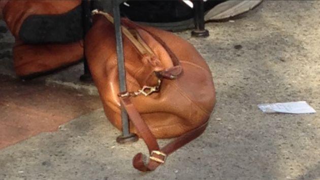 Doguinho ou bolsa? Esta foto está dando um nó na cabeça de muita