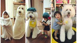 Você ainda não viu uma amizade TÃO FOFA quanto a desta bebê com seu poodle