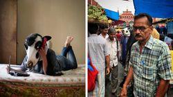 Por que as mulheres indianas estão usando máscaras de