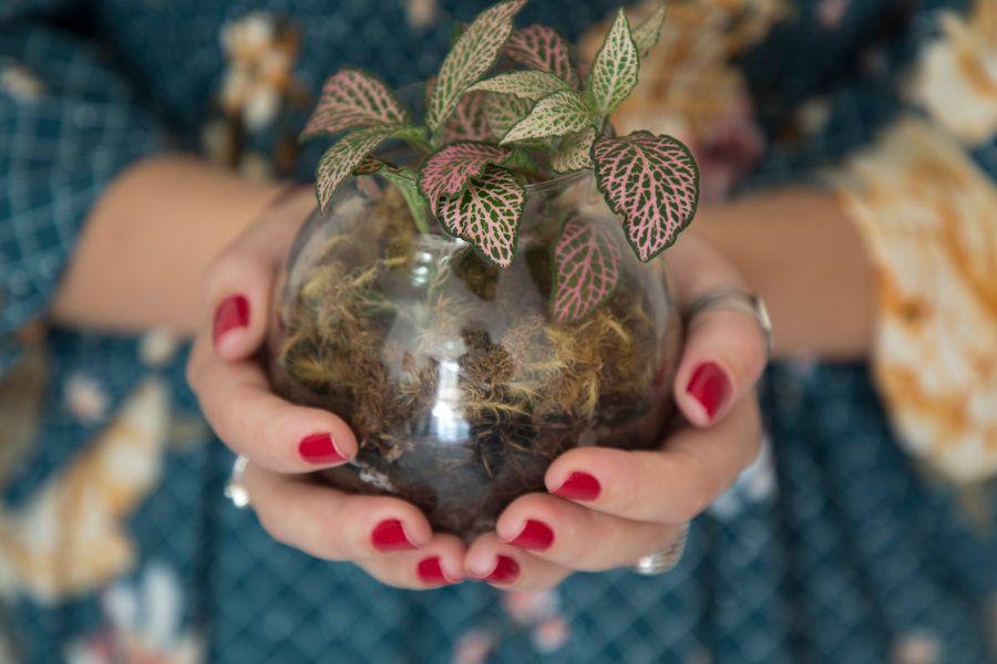Ela descobriu no movimento de cuidar das plantas e da terra uma tranquilidade