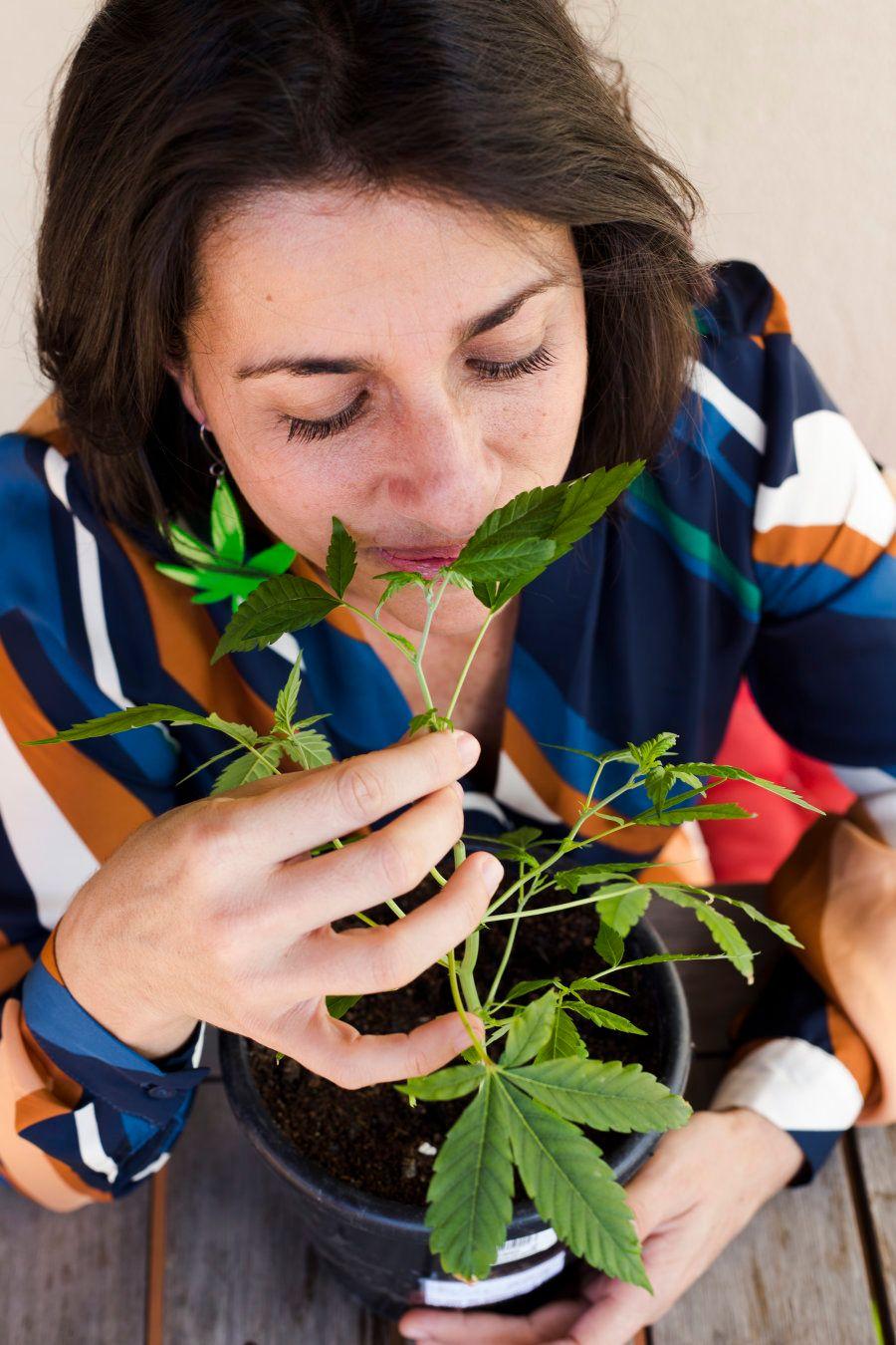 A advogada transformou a maconha em sua luta e tem um só sonho: legalizar a planta no