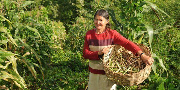 São mulheres cujas atividades são decisivas em suas famílias, comunidades e país, sendo responsáveis...