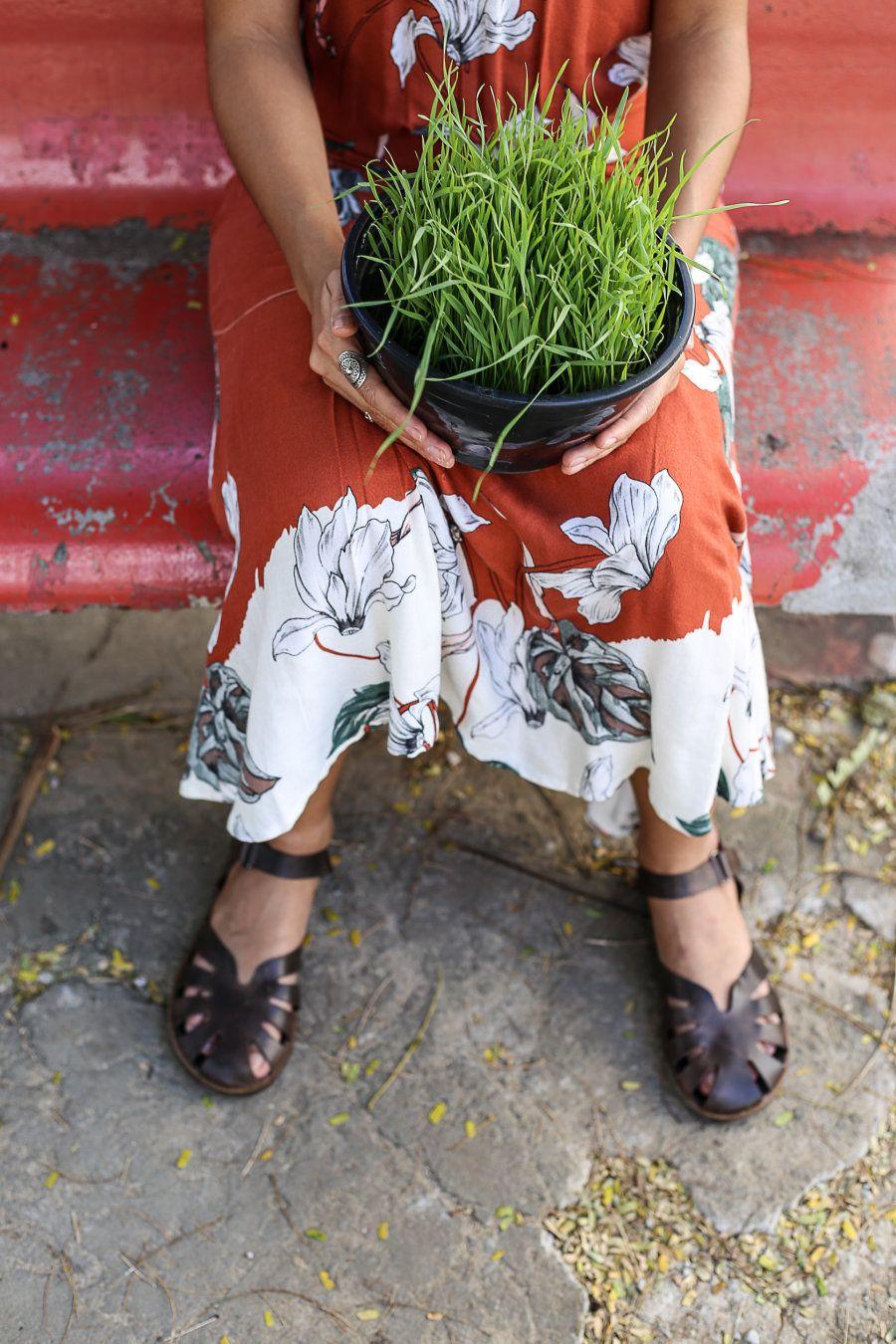 Débora está desenvolvendo um projeto no campo da alimentação viva para o mestrado no qual pretende ingressar...