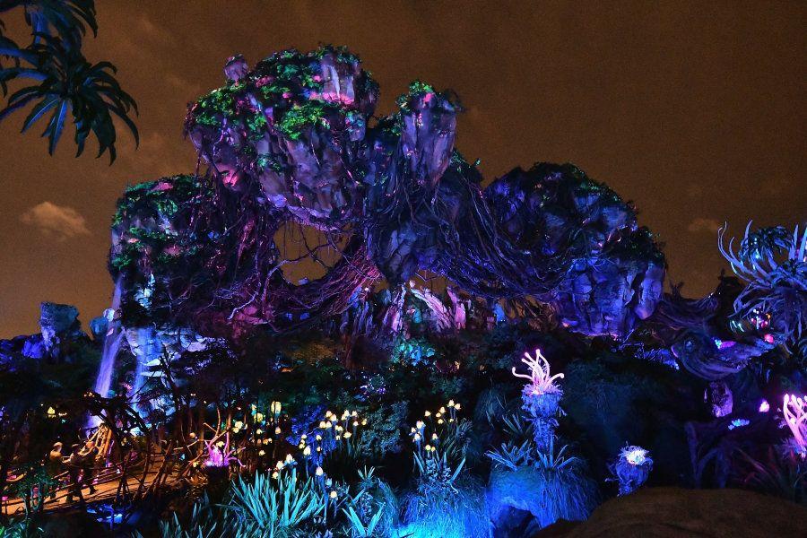 A experiência de visitar Pandora à noite é completamente diferente (e muito mais legal) do que durante...