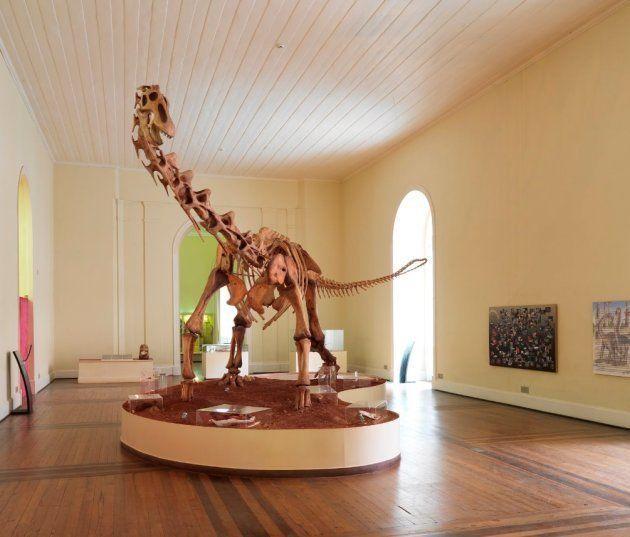 Réplica de Titanossauro, um dos destaques do tour virtual do Museu Nacional - destruído em setembro