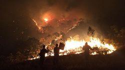 Incêndio na Chapada dos Veadeiros foi criminoso, diz Instituto Chico