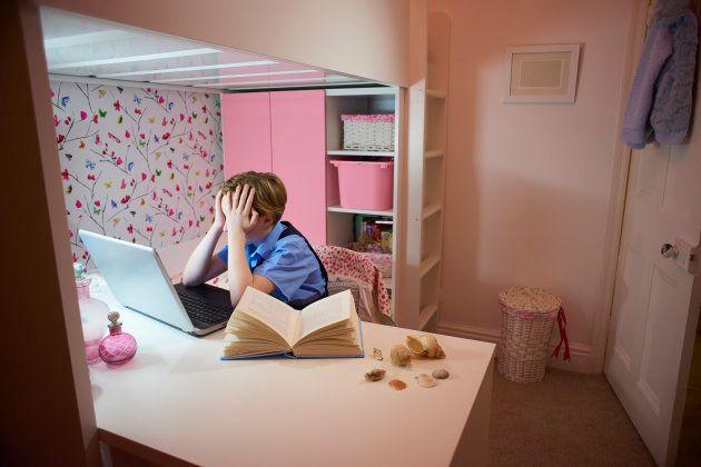 As denúncias de cyberbullying e cyberstalking subiram de 20% para 33% e de 15% para 29%, respectivamente,...