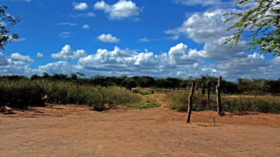 São 18 quilômetros de estrada de chão para chegar à casa de Maria Rivoleide, na zona rural de Olho D'Água...