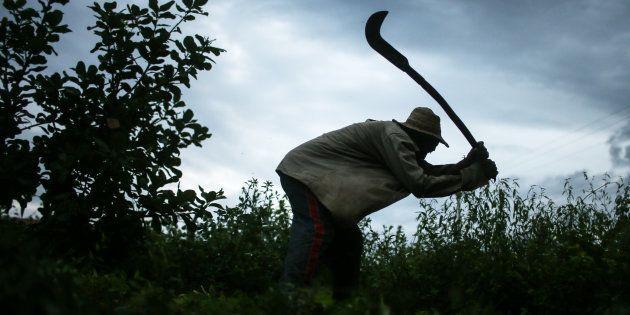 Trabalhador rural que passou por condição análoga à