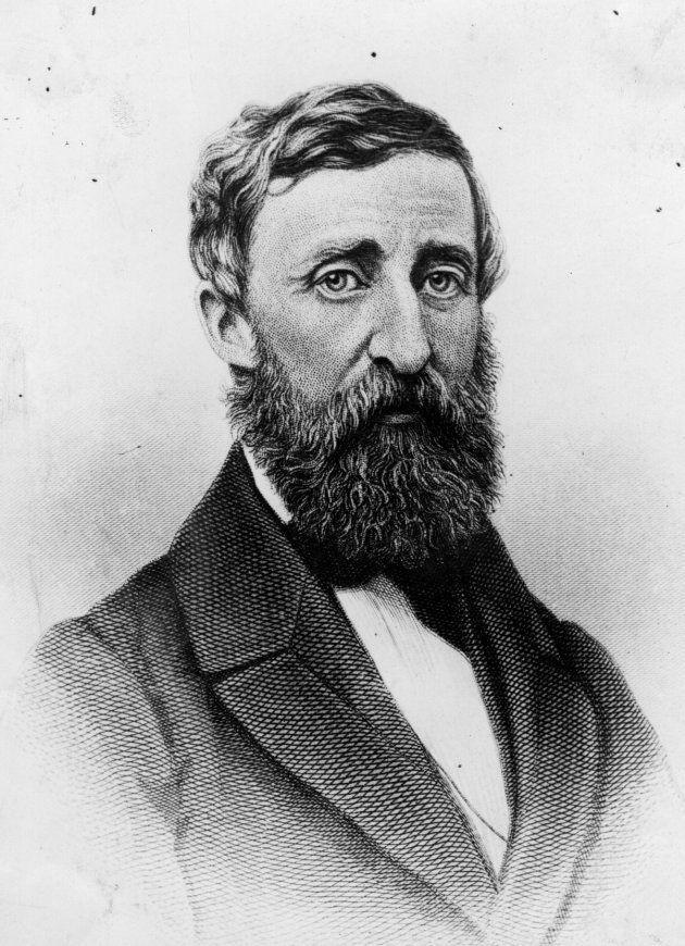 Henry David Thoreau consolidou o conceito de