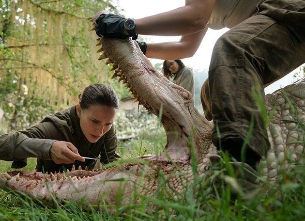 Natalie Portman analisa a natureza estranha em 'Aniquilação', filme baseado no livro