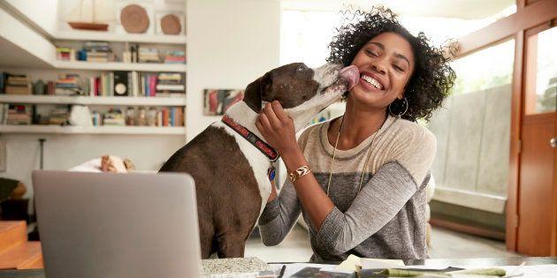 Pesquisadores incentivam falar com voz de bebê com cachorros.