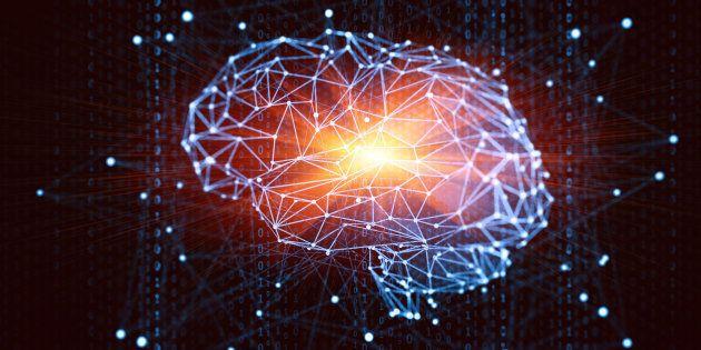 No cérebro, ao menos 200 vieses cognitivos influenciam nosso
