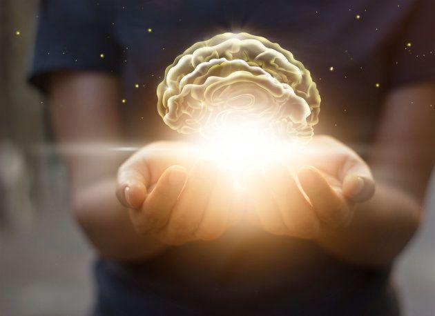 O seu cérebro não é tão racional quanto parece: A influência dos vieses