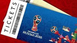 Copa sem vergonha: Aprenda a torcer pela Seleção em