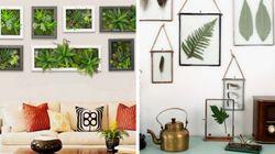 9 ideias de presentes com plantas para o Dia das