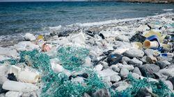 9 ações para você viver com menos plástico que vão beneficiar o