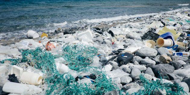 De acordo com a ONU, são necessários pelo menos 450 anos para que uma garrafa de plástico se