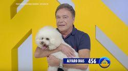 Alvaro Dias terá o reforço canino de Hugo Henrique para bombar o horário