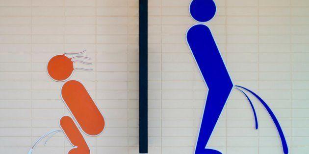 Mulher tem direito de fazer xixi em pé? Empresa lança condutor urinário