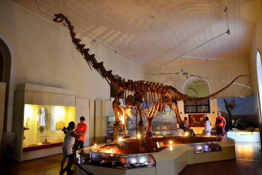 Acervo de paleontologia do Museu Nacional, com fósseis de dinossauros, reunia 56 mil exemplares e 18,9...