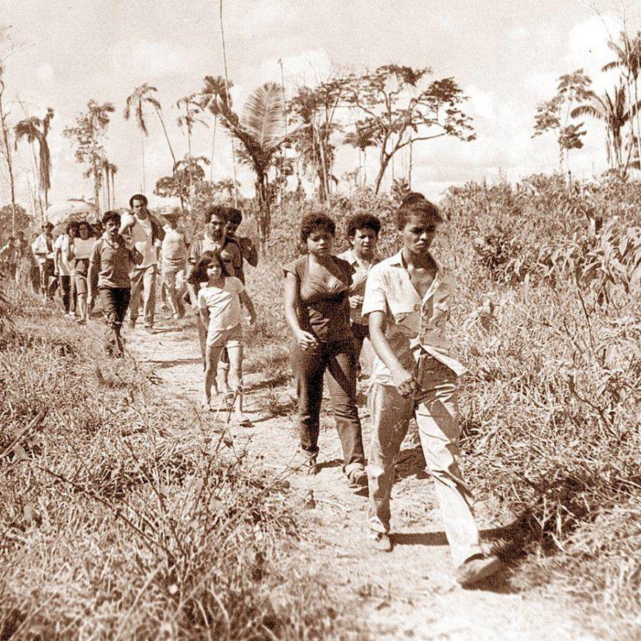 Marina Silva conheceu Chico Mendes no Acre, se envolveu no movimento ambientalista e participou da formação...