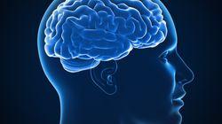 Os transtornos psiquiátricos e neurológicos têm a mesma base
