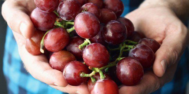 A maioria dos brasileiros que consomem vinhos optam pelos vinhos de