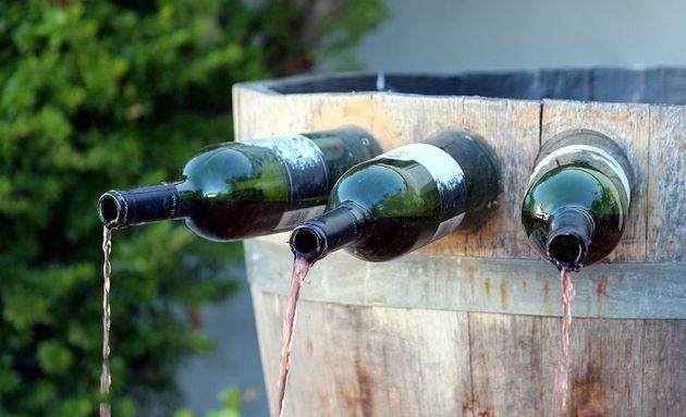 O que você acha dos vinhos de
