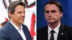 Haddad tem 43% e Bolsonaro, 41%, em cenário de 2º turno, diz