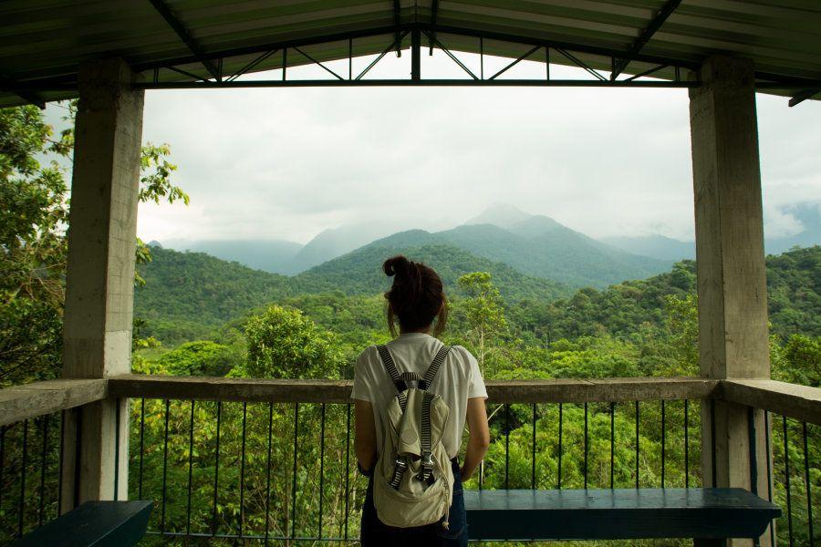 Em janeiro, será feito um novo reflorestamento na REGUA. A meta é plantar outras 15 mil árvores em 6