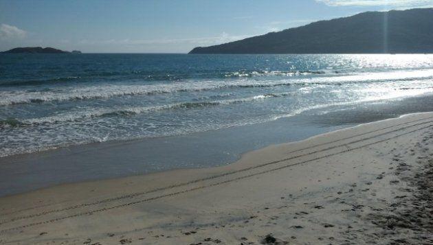 Praia dos Ingleses tem tranquilidade e agito para a galera em um mesmo